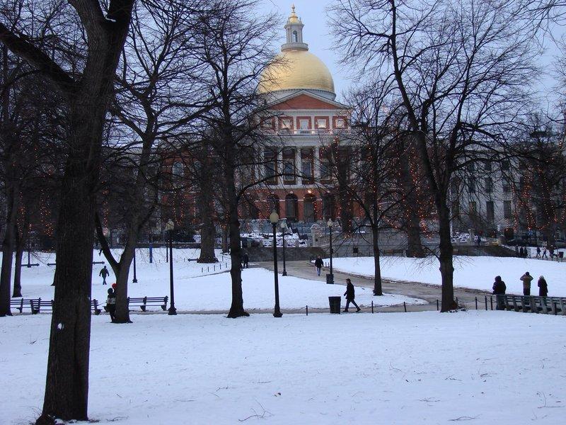 Boston Common 4
