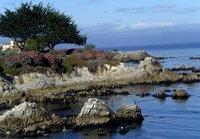 Gorgeous Monterey Coast
