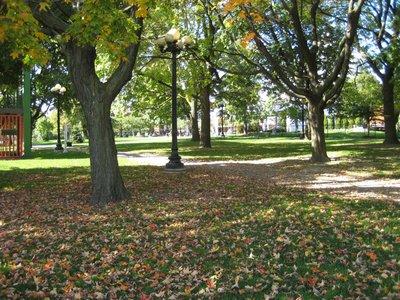2008_10_11.._Ground.jpg