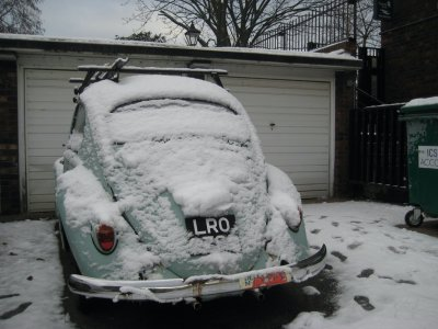 Frozen_Bug.jpg