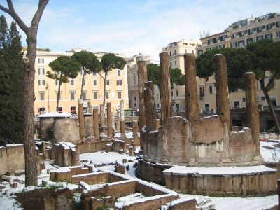 Largo di Torre Argentina in the snow