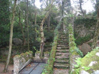 Mossy_step.._Castle.jpg