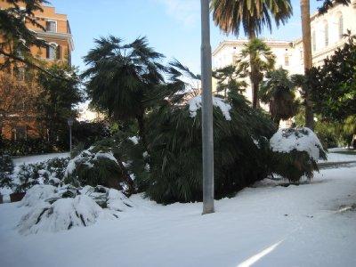 Snow_in_Rome_04.jpg