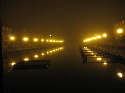 Tern_Raft_..don_Fog.jpg