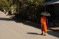 monk umbrella