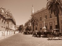 Sevilla  main stretch