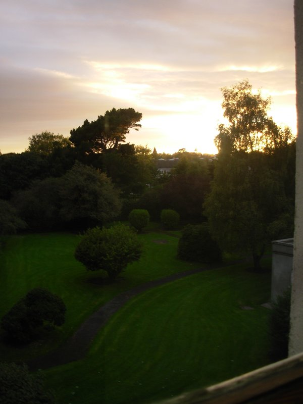 Lovely Scenery Outside My Bedroom Window