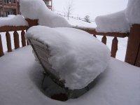 Snowy_Things_017.jpg