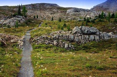 Citadel_Pass_Trail.jpg