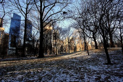 central_park.jpg