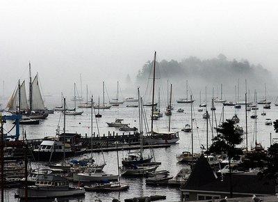 foggy_harbor.jpg