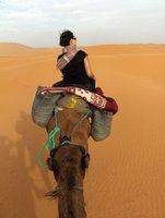 CamelLiz.jpg