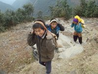 Carrying rice up the mountain, Helambu region