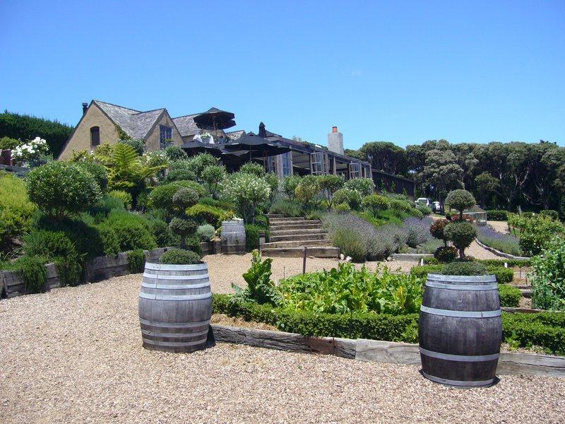 Waiheke Island wine tour1