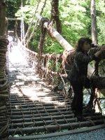 Oboke, vine bridge