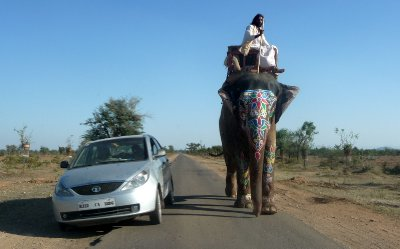 Elephant_ride.jpg
