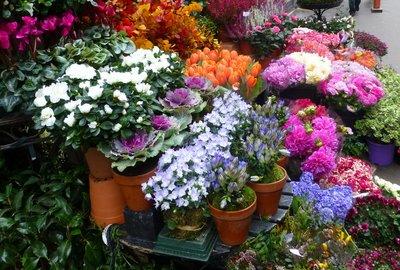 Flower_shop.jpg