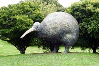 Kiwi_bird.jpg