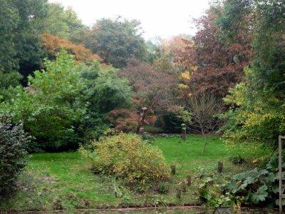 Manor_garden.jpg