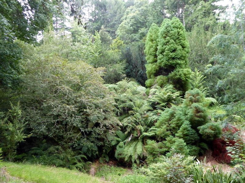 large_Arboretum.jpg