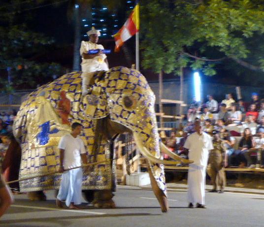 large_Elephant.jpg