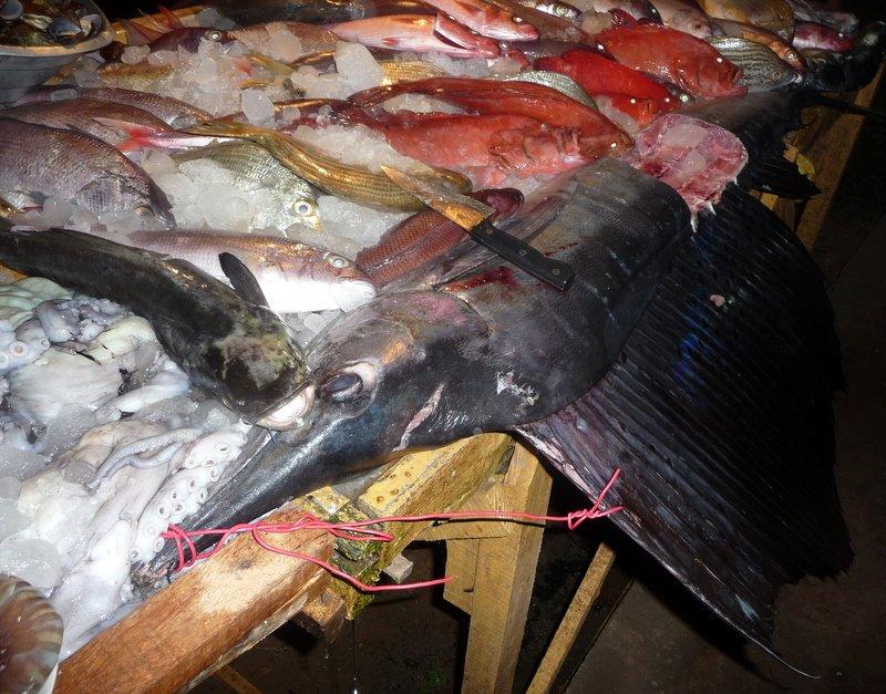 large_Fish_dinner.jpg
