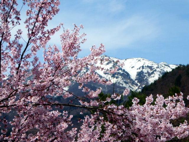 large_Japan_Alps.jpg