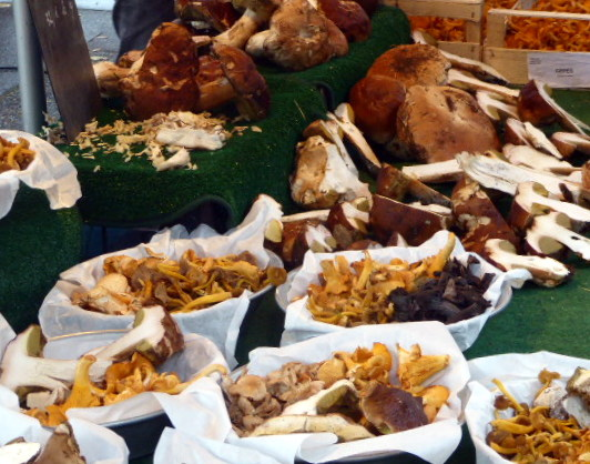 large_Market_mushrooms.jpg