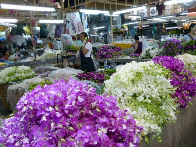 large_Orchid_sellers.jpg
