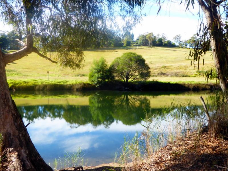 large_River_scene.jpg