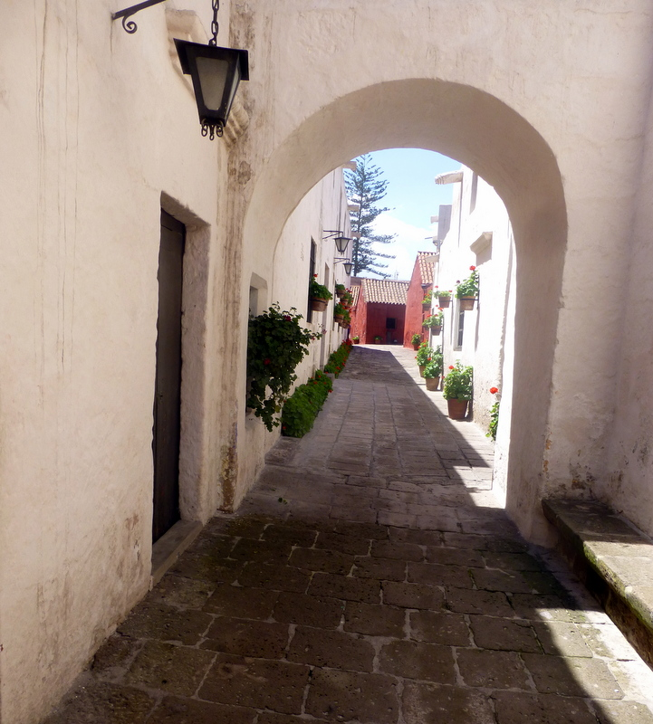 large_Street_in_Santa_Catalina.jpg