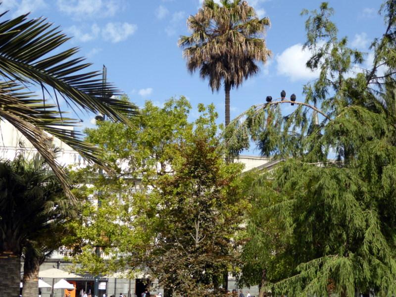 large_plaza_de_armas.jpg