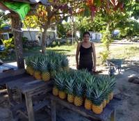 Pineapple gal