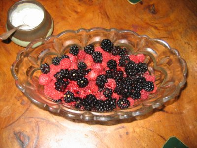 A bowl of raspberries and blackberries from the garden