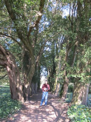 This stately avenue of yew trees is where Edmund Spencer is said to have written the Faerie Queen