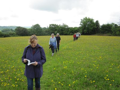 Sandi leading the way with our wild flower manual being put to use, and of course, many more happy snaps along the way