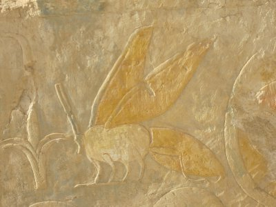 This flying creature we found on many murals in the temples, and have yet to discover its relevance