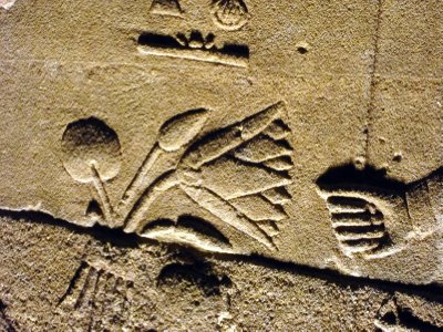 Carving of the lotus flower,which is the heraldic plant of Upper Egypt.