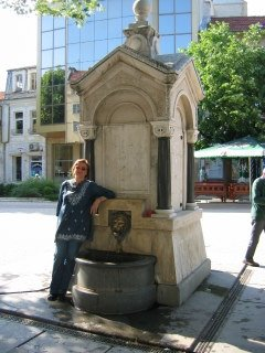 The Lion drinking fountain in the central square