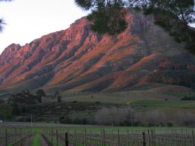 Sun setting on the Franschoek mountains