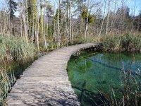 Plitvička Jezera - bridge over quiet water