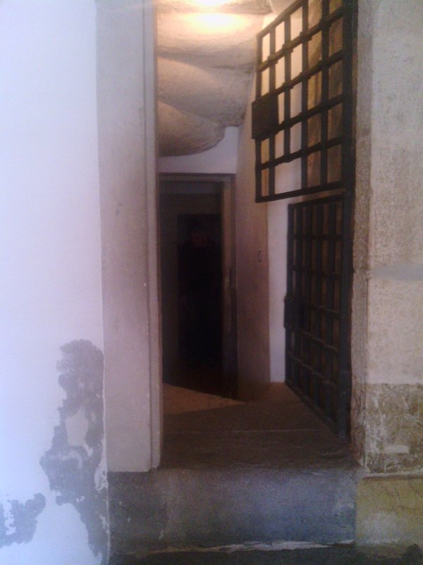 Entry to cells