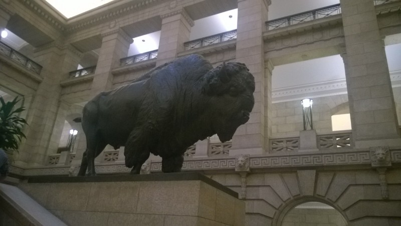 Bison inside Manitoba Legislature