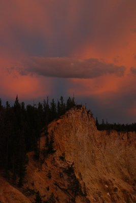 Yellowston..nbat_m_.jpg