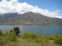 NZ_and_Misc_556.jpg