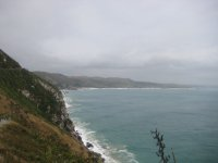 NZ_and_Misc_633.jpg