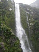 NZ_and_Misc_870_-_FAV.jpg