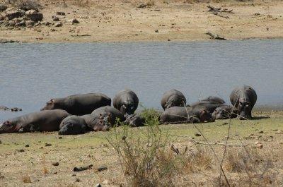 Africa_Oct_09_521.jpg