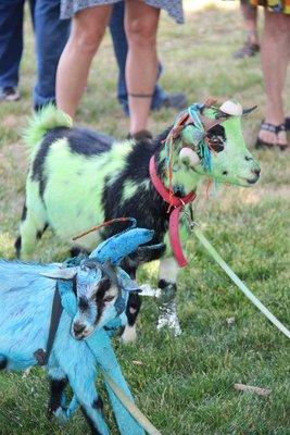 Alien goats