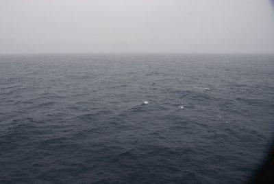Antarctic waters